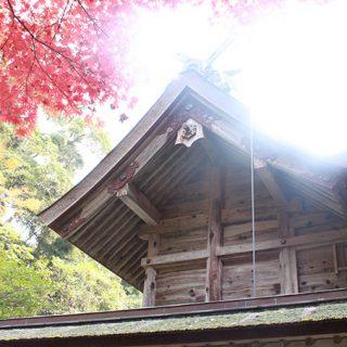 写真:美保神社 社殿・境内01(5)