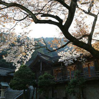 写真:美保神社 社殿・境内02(8)
