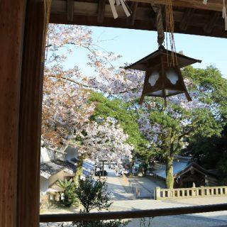 写真:美保神社 社殿・境内02(9)