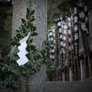 写真:美保神社 社殿・境内03(5)